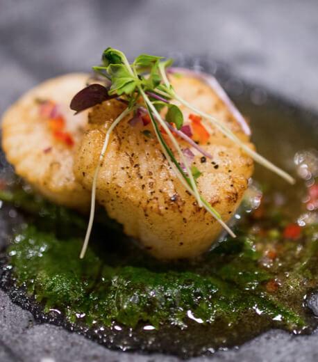 Sushi Zushi        Shapelogo-instagramemail-84